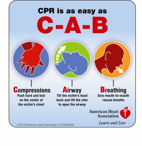 www.heart.org